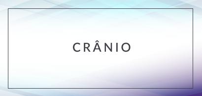 bt_cranio_2